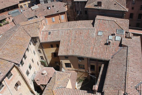 20120808_5023_Siena-rooftop-view