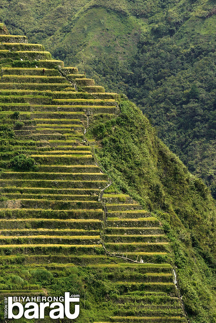 batad rice terraces ifugao