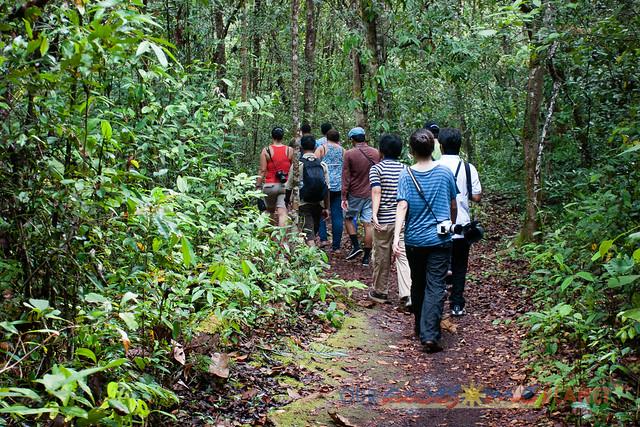 Orangutan World, Tanjung Puting Borneo Adventure-82.jpg