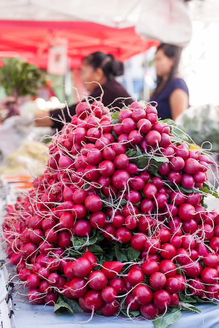Bunches and Bunches of Radishes