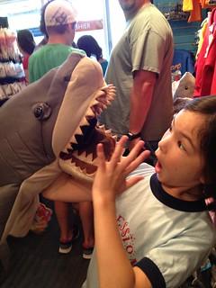 ahh! it's a shark!