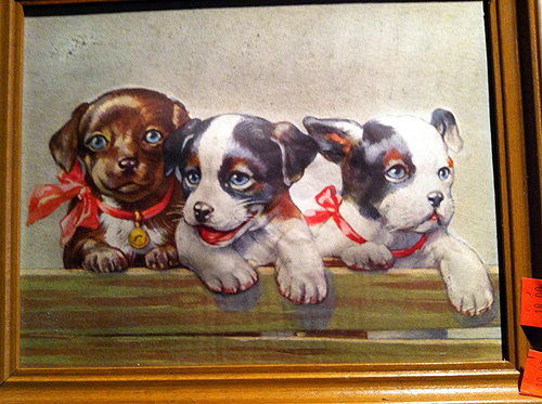 3-D puppy picture
