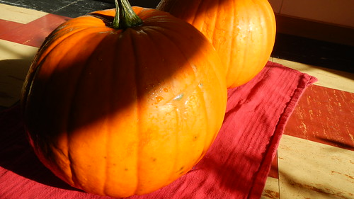 Pumpkin-Off 2012