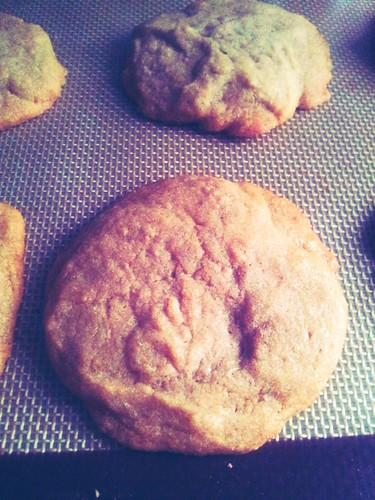 Cookie Butter Cookie