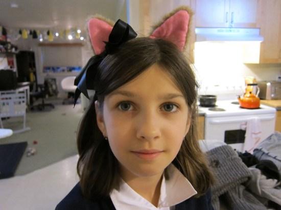 Cat Sym