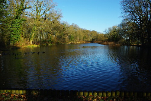 20120102-13_Coombe Abbey_Top Pool by gary.hadden