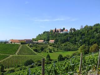 Summer in Lower Franconia