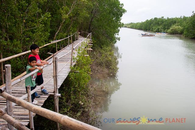 Bakhawan Eco-Park-16.jpg