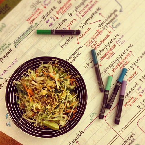 Homemade Vietnamese chicken salad goes great with huge med school study aids.