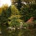 Anderson Japanese Gardens 004