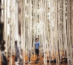 Weaving. by Evan J Atwood