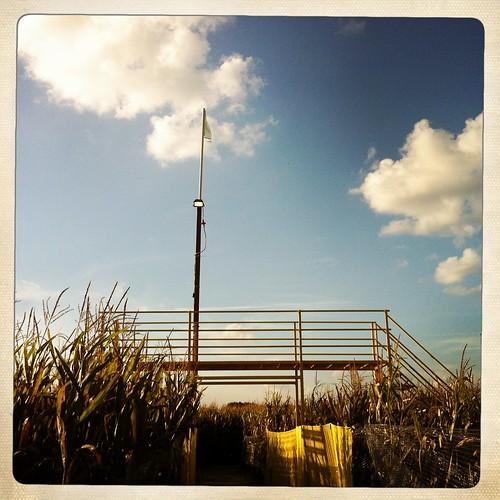 Viewing Platform, Mid-South Corn Maze