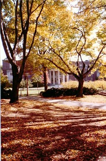Penn State, 1983