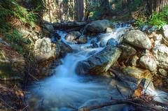 DSC_0087 mcway creek hdr 850