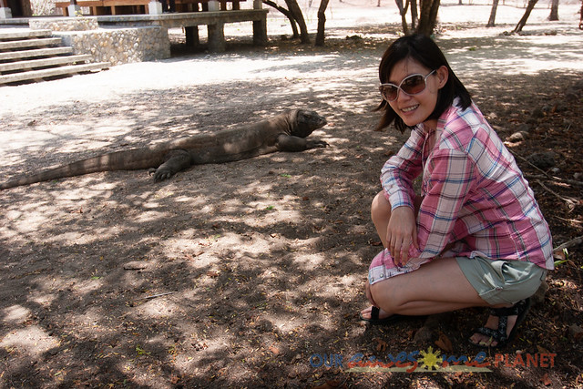 Komodo Dragon National Park-39.jpg