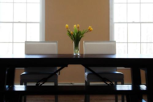 Yellow Tulips1