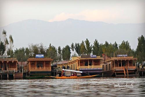 Kashmir (India)