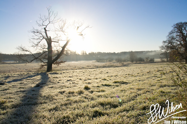 Winter Sun – Daily Photo (20th December 2012)