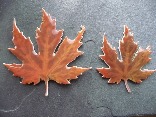 Handmade Plastic Leaf Brooches