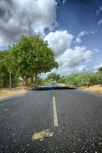 Somewhere on Bhuj-Mundra road, Kutch, Gujarat by Jayesh Bheda