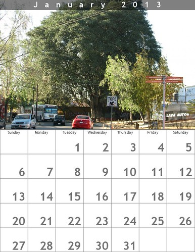 January 2013 Calendar (Oaxaca Trees) @bighugelabs