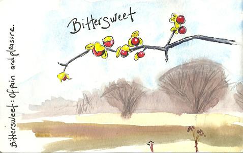 20121202_bittersweet