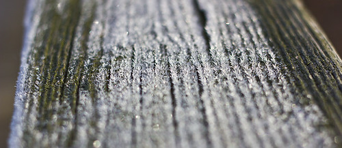 Morning Frost on Packanack Lake Bridge