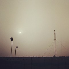 Sun in the morning fog