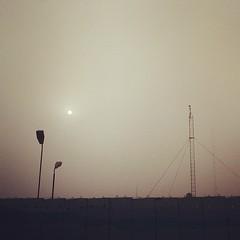 Sun in the morning fog