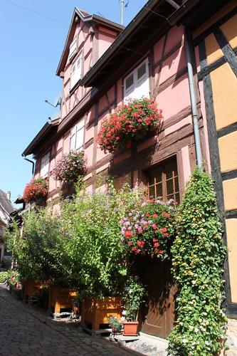 20120819_6144_Eguisheim