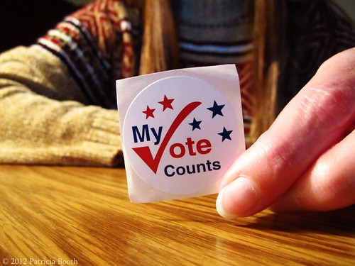 Day 311 Election Day by pixygiggles