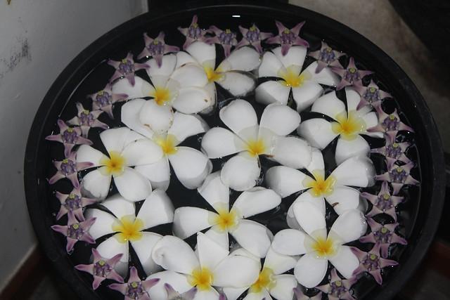Massages Southeast Asia