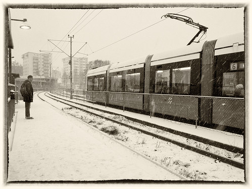 338/366 - Under snowfall by Flubie