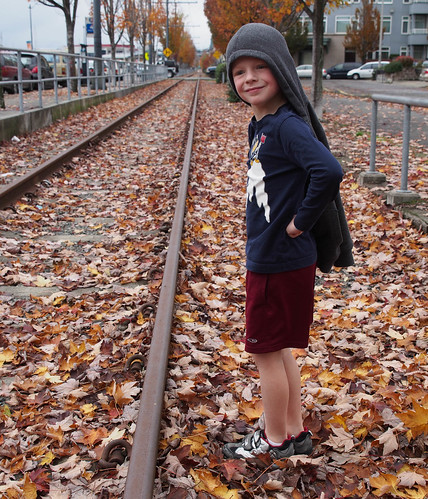 Autumn by the Tracks