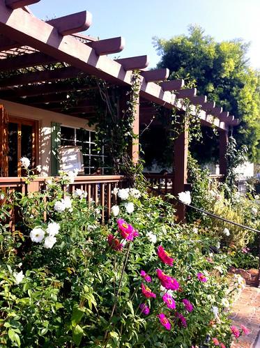 thyme porch