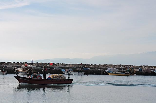Boat at Assos