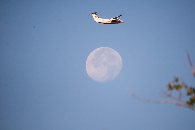 _DSC3041 plane