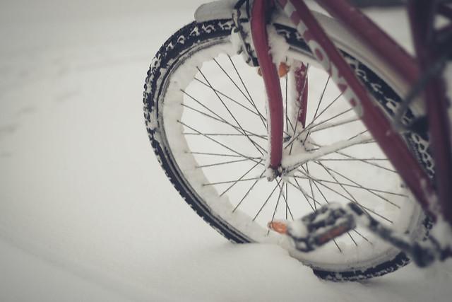 No Weather For Biking