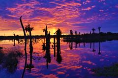 Sunset at Viera