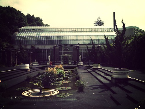 Winter Gardens in Auckland (not very wintery!) Amazing how a filter on the flickr iphone app can make pictures look arty eh lol
