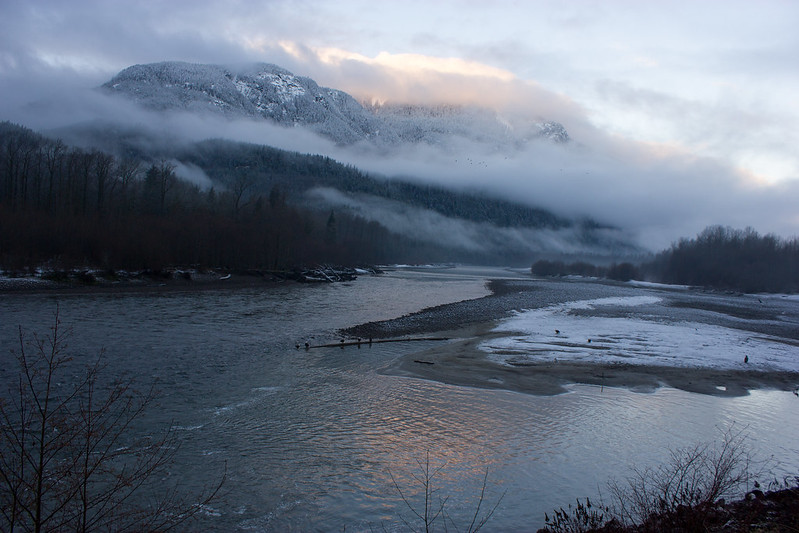 Brackendale Squamish River.jpg