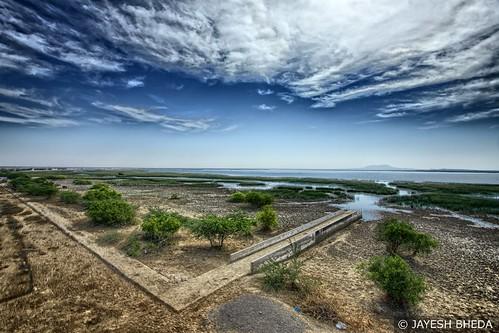 Chhari lake, Nakhtrana,Kutch by Jayesh Bheda