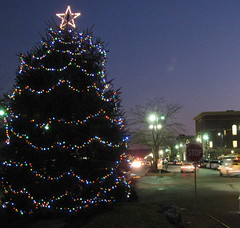 Wakefield Christmas Tree