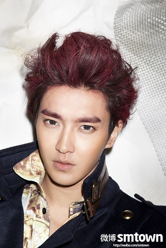130106 Super Junior-M Break Down Official Photos - SIWON [1P] by stormmusic325
