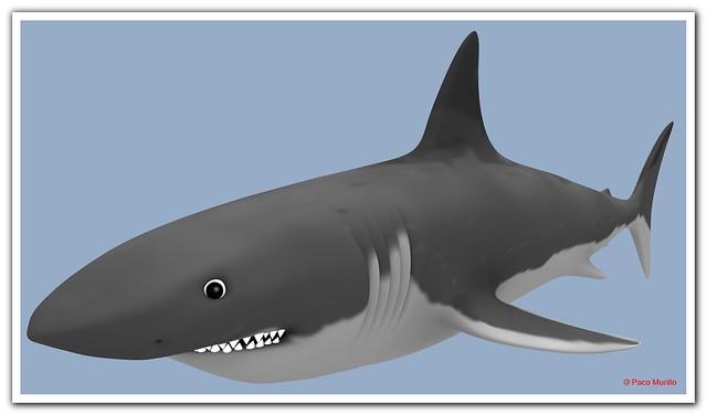 tiburón_2