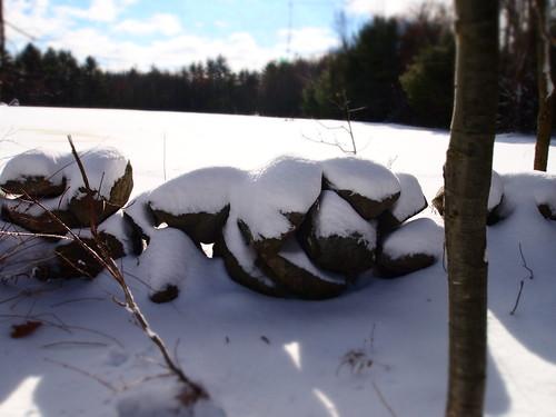snowy nh