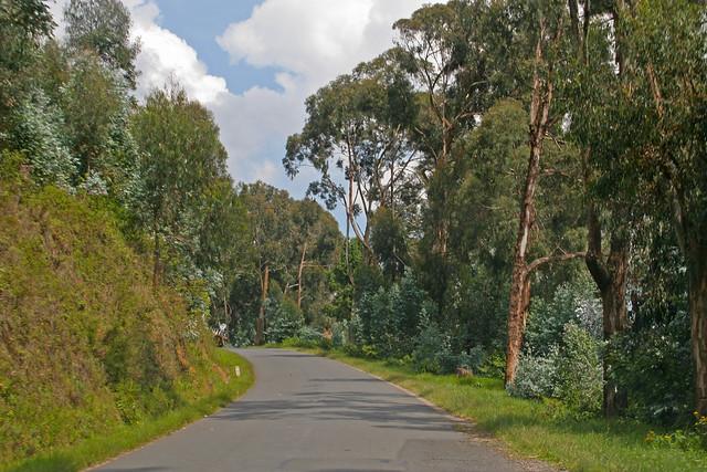 Rwandan road
