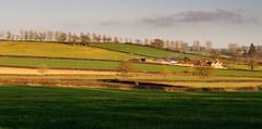 Spire Farm