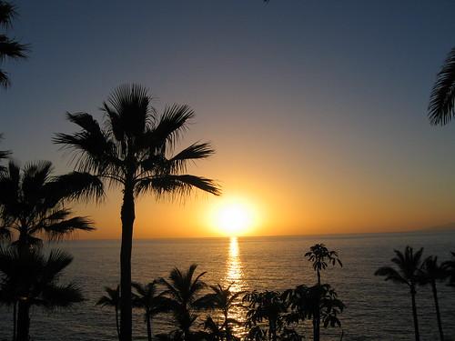 Mare al Tropico