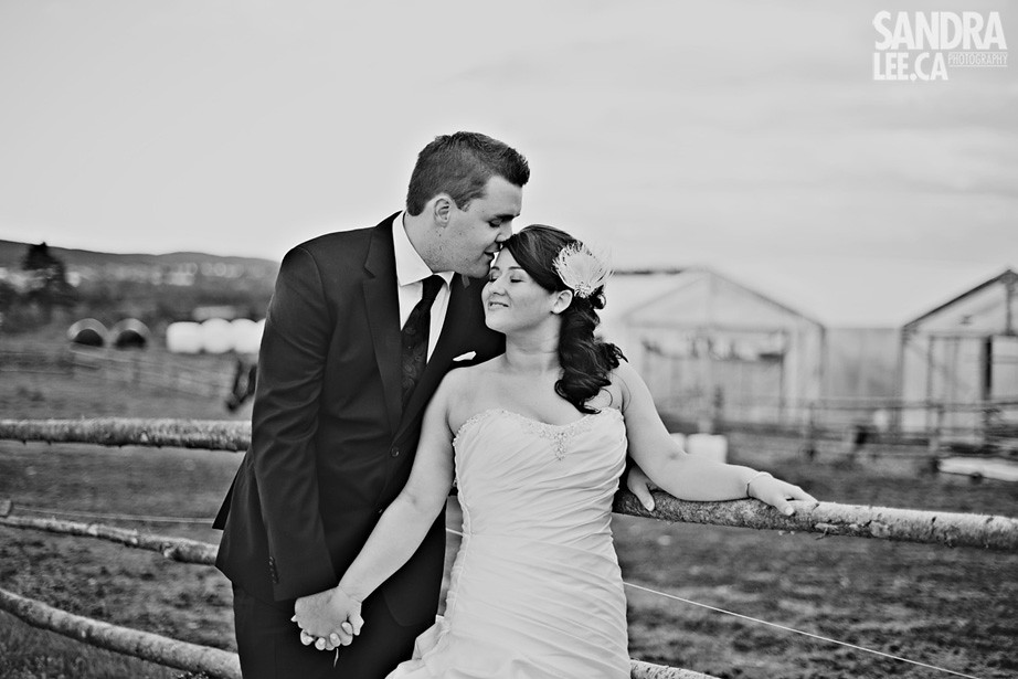 Arlynn + Steve | Newfoundland Wedding Photography